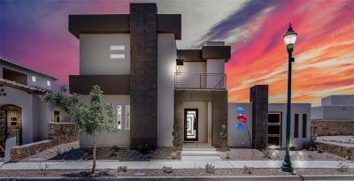 El Paso Single Family Home For Sale: 172 Vin Zamora Lane