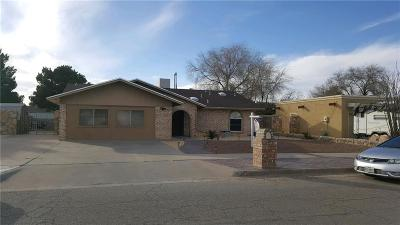 Horizon City Single Family Home For Sale: 362 Brill Circle