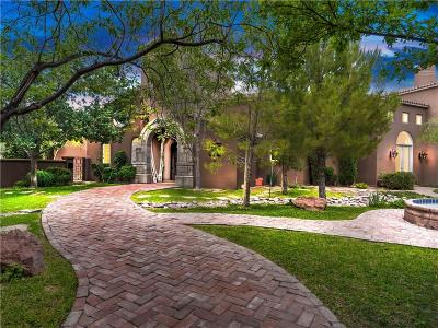 El Paso Single Family Home For Sale: 817 Forest Willow Circle