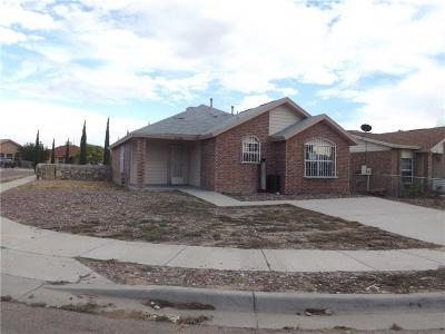 Socorro Single Family Home For Sale: 1136 Valley Ridge Drive