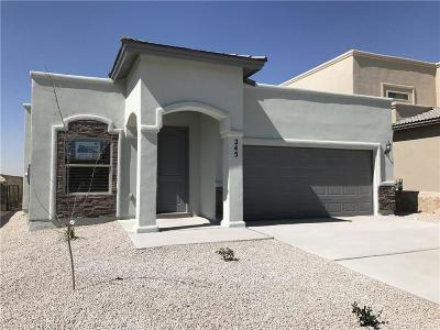 Horizon City Single Family Home For Sale: 245 Selwood