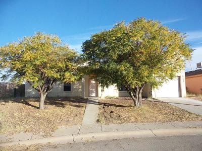 San Elizario Single Family Home For Sale: 11404 Casita Court