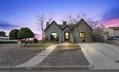 El Paso Single Family Home For Sale: 801 University Avenue