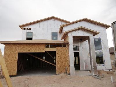 Single Family Home For Sale: 1163 Jaime J Zapata Street