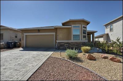 El Paso Single Family Home For Sale: 7232 Longspur