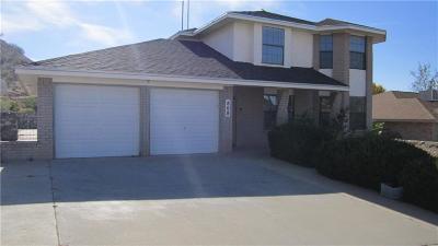 El Paso Single Family Home For Sale: 808 Hempstead Drive