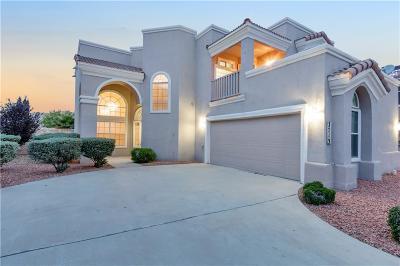 El Paso Single Family Home For Sale: 3713 Tierra Campa Drive