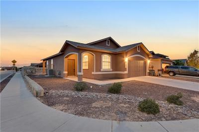 El Paso Single Family Home For Sale: 14230 Point Avenue