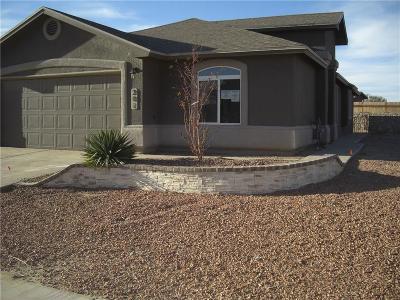 Socorro Single Family Home For Sale: 201 Flor Scabiosa Drive