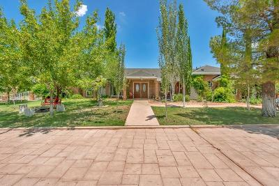 El Paso Single Family Home For Sale: 4031 Roadside Court
