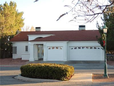 El Paso Single Family Home For Sale: 612 Rosinante Drive