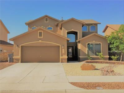 Single Family Home For Sale: 7318 Black Mesa Drive
