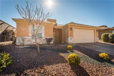 Single Family Home For Sale: 14020 Rainbow Point Drive