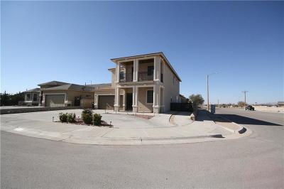 Horizon City Single Family Home For Sale: 1385 Andrea Micaela Place