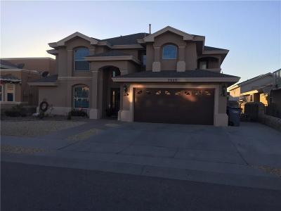 Single Family Home For Sale: 3829 Tierra Aurora Drive