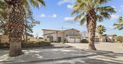 Single Family Home For Sale: 9100 Mettler Drive