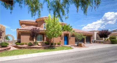 El Paso Single Family Home For Sale: 1165 Calle Del Sur Drive