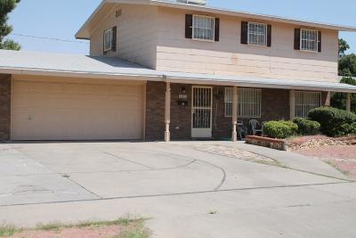 El Paso Single Family Home For Sale: 10245 Luella Avenue
