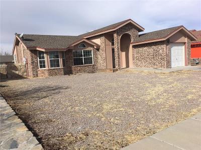Horizon City Single Family Home For Sale: 445 Von Bargen Drive