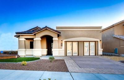 El Paso TX Single Family Home For Sale: $214,950