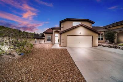 El Paso Single Family Home For Sale: 6621 Parque Del Sol Drive