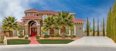 El Paso Single Family Home For Sale: 6337 Franklin Crest Drive