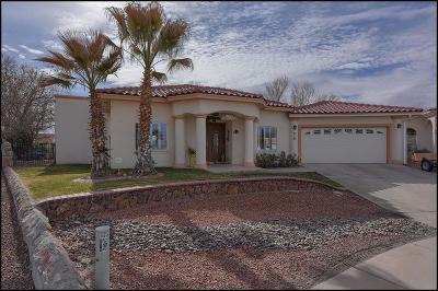 El Paso Single Family Home For Sale: 920 Valle Bello Avenue