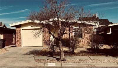 El Paso Single Family Home For Sale: 3685 Healy Drive