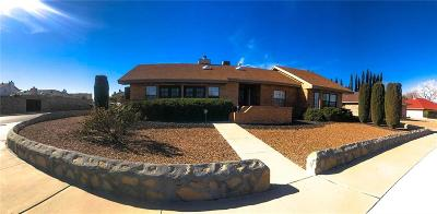 Single Family Home For Sale: 11460 Tom Ulozas Drive