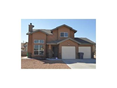 El Paso Single Family Home For Sale: 716 Vern Butler Drive