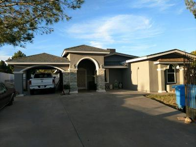 Socorro Single Family Home For Sale: 10971 Donna Marie Drive
