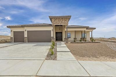El Paso Single Family Home For Sale: 12280 Freshwater