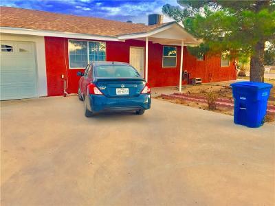San Elizario Single Family Home For Sale: 13211 Eudora Drive