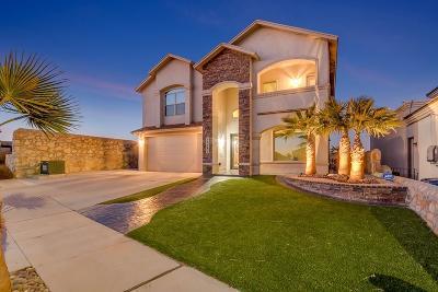 El Paso Single Family Home For Sale: 12581 Greg Martinez