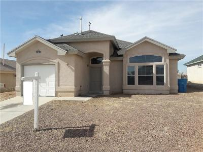 Socorro Single Family Home For Sale: 10766 Spring Valley Circle