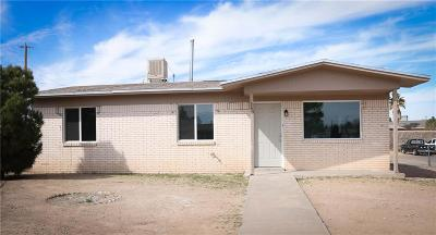 Single Family Home For Sale: 245 Manuel Drive