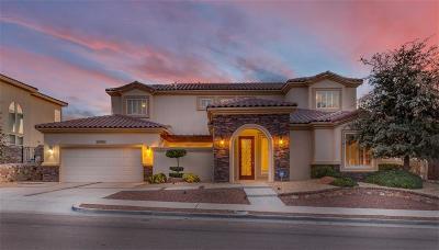 El Paso Single Family Home For Sale: 6204 Franklin Hawk Avenue
