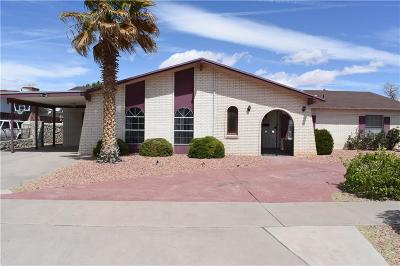 El Paso Single Family Home For Sale: 9317 Jacey Court