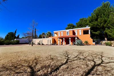 El Paso Single Family Home For Sale: 607 Sunset Road