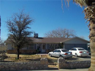 El Paso Single Family Home For Sale: 344 Fair Lawn Lane