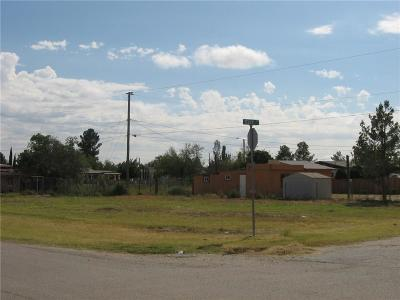 Socorro Single Family Home For Sale: 350 Telop Road