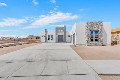 El Paso Single Family Home For Sale: 12301 Biddleston Drive