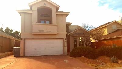 El Paso Single Family Home For Sale: 12408 Paseo Largo Circle