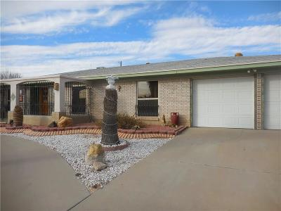 El Paso Single Family Home For Sale: 8605 Moye