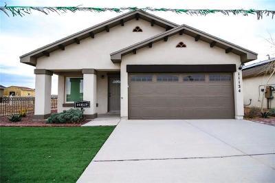 El Paso Single Family Home For Sale: 11133 Catherine Slutter Lane