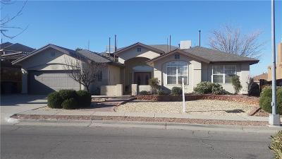 El Paso Single Family Home For Sale: 1345 Rancho Grande Drive