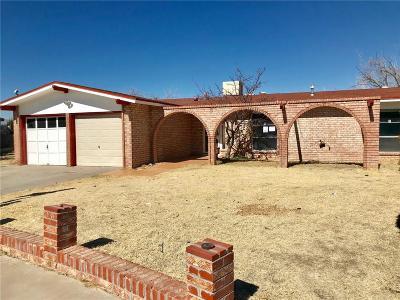 El Paso Single Family Home For Sale: 3009 Escarpa Drive