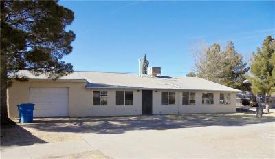 Socorro Single Family Home For Sale: 10128 Aldrin Circle
