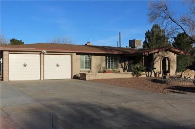 El Paso Single Family Home For Sale: 724 Quinta Luz Circle