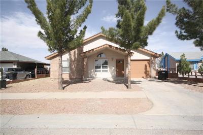 Horizon City Single Family Home For Sale: 255 Barrel Cactus Drive
